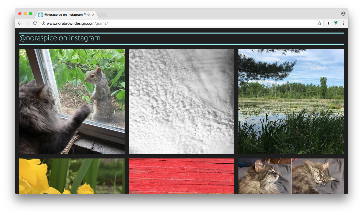 An Instagram gallery with Vue.js and CSS Grid
